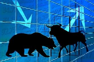 capitalised stocks