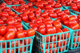 Tomato Farmers To Boost Wheat Production In Sokoto