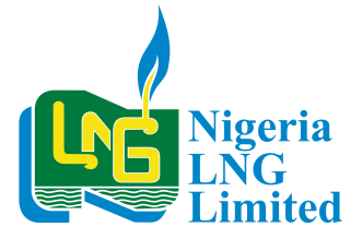 Domestic gas to increase to 3m tons per year-NLNG