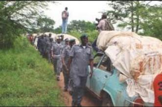 Rice Smugglers
